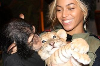 Beyonce Knowles posing with baby chimp and tiger cub. Not a good role model.